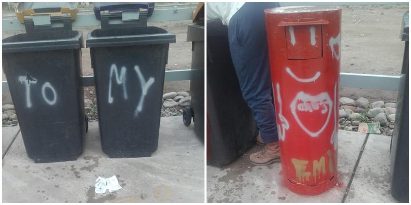 Estaciones ecológicas: No solo tiran basura que no corresponde, sino que ahora las vandalizan