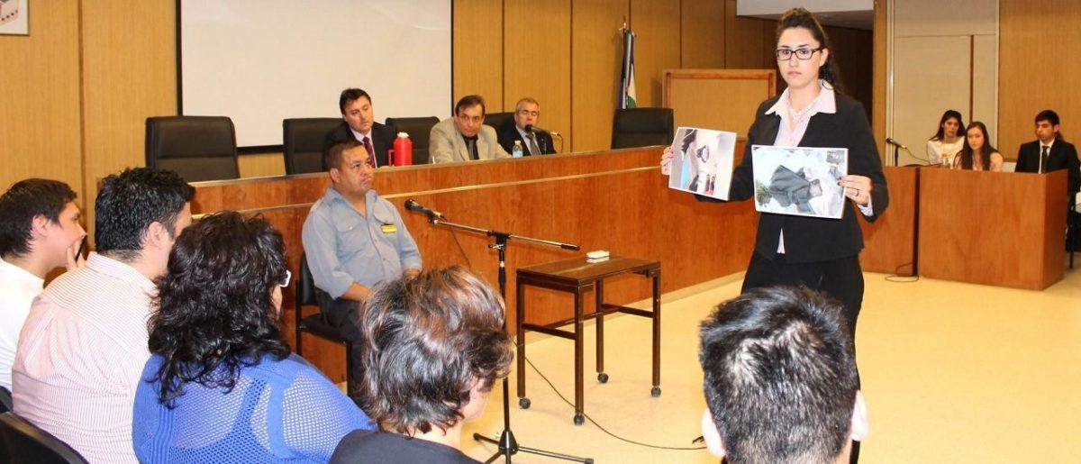 Diputada sanrafaelina propone limitar los indultos en delitos de corrupción, y que sean competencia de los juicios por jurado